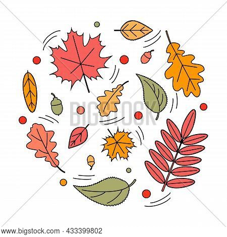 Autumn Leaves, Doodle Set Of Simple Icons On White Background. Fallen Leaves. Autumn Palette. Leaves