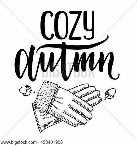 Cozy Autumn Quote Vector Illustration Isolated On White Background. Autumn Lettering For Poster, Web