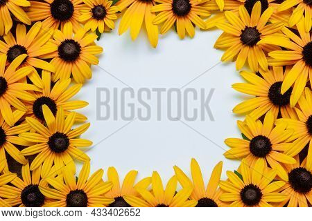 White Paper Card With Frame Of Yellow Flowers Of Sunflowers And Echinacea Close-up, Flat Lay, With E