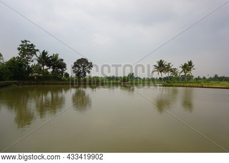 View Of The Shallow Lake In The Village For Banner, Poster, Print And Background