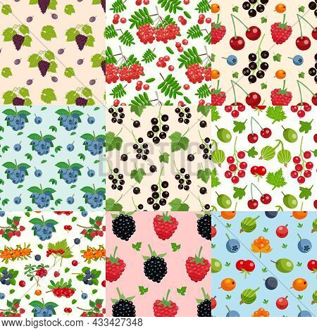 Set Of Nine Seamless Berries Patterns With Twigs Of Red And Black Currant Raspberry Blueberry Dewber