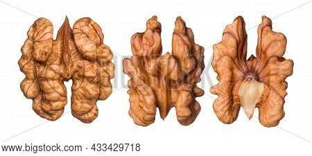 Natural Walnut Kernels Isolated On White Background