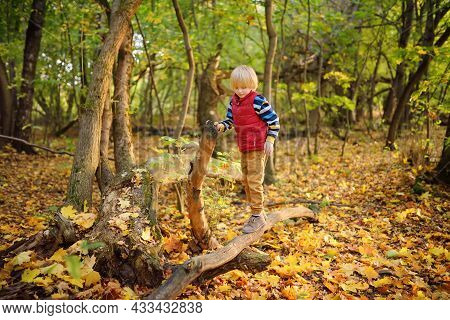 Little Boy Having Fun During Stroll In The Forest At Sunny Autumn Day. Active Family Time On Nature.