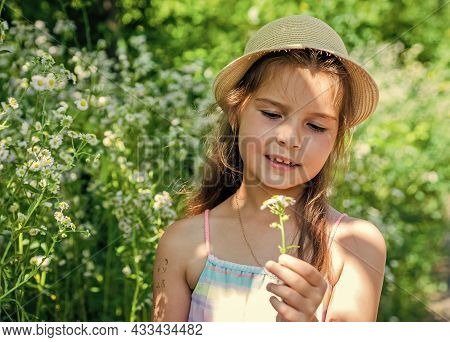 Spring Is Beautiful. Little Child Hold Chamomile Flowers Natural Landscape. Spring Blossom. Floral S