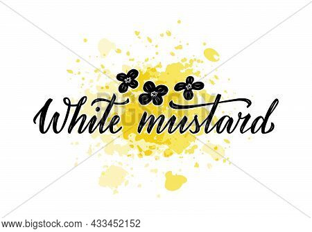 Vector Illustration Of White Mustard Lettering For Packages, Product Design, Banners, Stickers, Spic