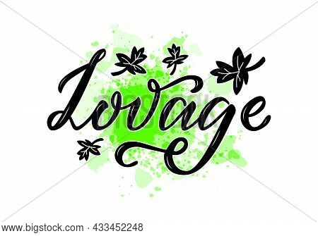Vector Illustration Of Lovage Lettering For Packages, Product Design, Banner, Spice Shop, Pharmacy P