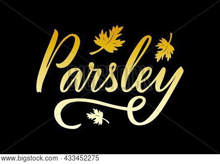 Vector Illustration Of Parsley Lettering For Packages, Product Design, Banner, Spice Shop  Price Lis