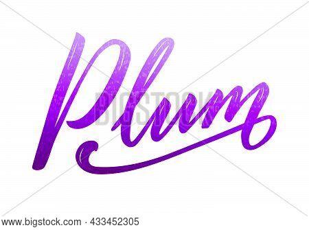 Vector Illustration Of Plum Lettering For Banner, Poster, Menu, Signage, Advertisement, Card, Packag