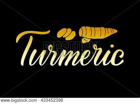 Vector Illustration Of Turmeric Lettering For Packages, Product Design, Banner, Spice Shop  Price Li