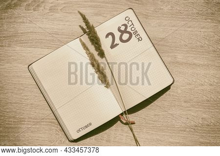 October 28. 28th Day Of Month, Calendar Date.blank Pages Of Notebook Are Beige, With Dried Spikelets