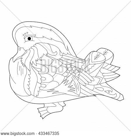 Fancy Bird Mandarin Duck. Black And White Picture. Contour Linear Illustration For Coloring Book Wit