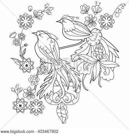 Contour Linear Illustration For Coloring Book With Paradise Bird. Beautiful Tropical Exotic Bird, An
