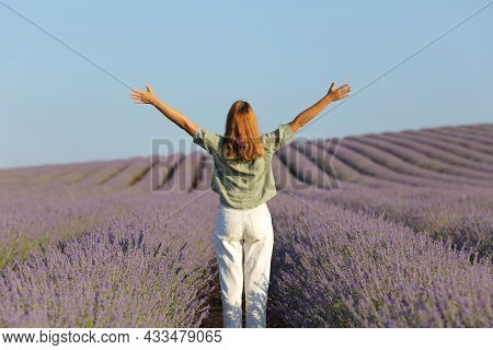 Back View Full Body Portrait Of A Lady Celebrating Vacation Outstretching Arms In Lavender Field