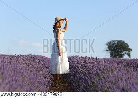 Full Body Portrait Of Woman Contemplating Views In Lavender Field