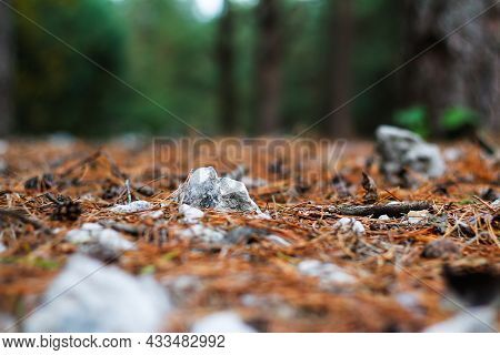 Defocus Close-up Fur And Pine Forest Floor Of Crushed Stones In Mound Or Memorial. White Rock, Miner