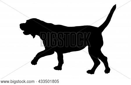 Black Dog Silhouette. Walking English Beagle Puppy. Pet Animals. Isolated On A White Background. Vec