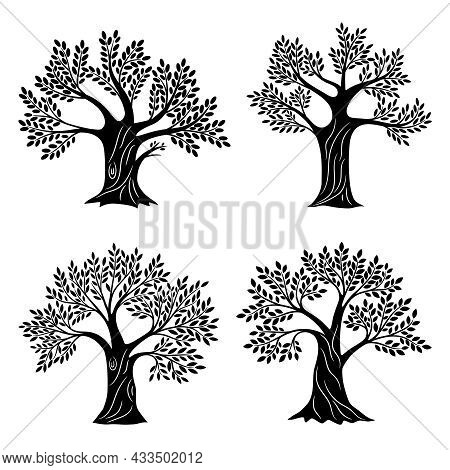 Living Trees Silhouettes. Minimalistic Genealogical Tree Set With Foliage, Life Education And Health