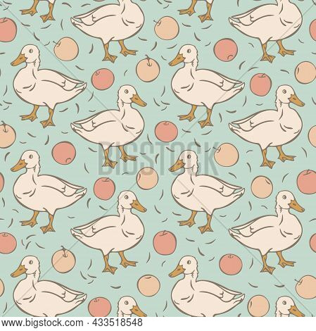 Vector Seamless Pattern With Domestic Duck And Apples. Design With Hand Drawn Duck And Apples.