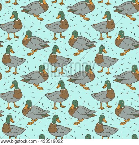 Vector Seamless Pattern With Wild Ducks On Blue Backround. Design With Drakes.