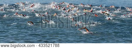 Large Group Of People In Swimming At Triathlon