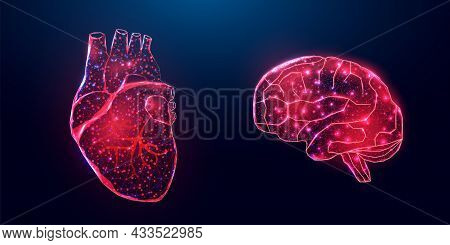Human Heart And Brain. Wireframe Low Poly Style. Concept For Medical, Treatment Of The Hepatitis. Ab