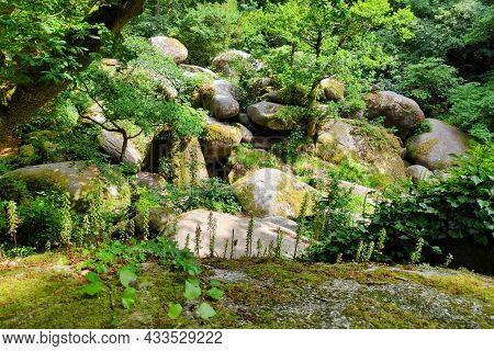 Blockfield At The Forest Of Huelgoat On The Steep Slopes Of The Silver River (rivière D'argent) Kno