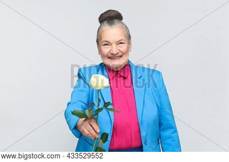 Happiness Old Woman Present For You White Rose. Handsome Expressive Grandmother With Light Blue Suit
