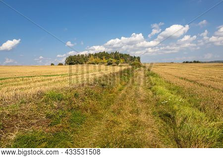 Autumn Landscape With Dirt Road Between Stubble Fields, Trees And Blue Sky With Amazing White Clouds