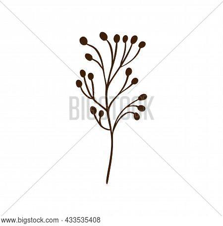 Minimalistic Flower. Graphic Hand Drawn Plant, Trendy Tiny Scandinavian Style Design, Floral Botanic