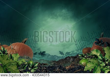 Halloween Autumn Background In A Creepy Night Background With Copy Space As A Pumpkin Patch With  A