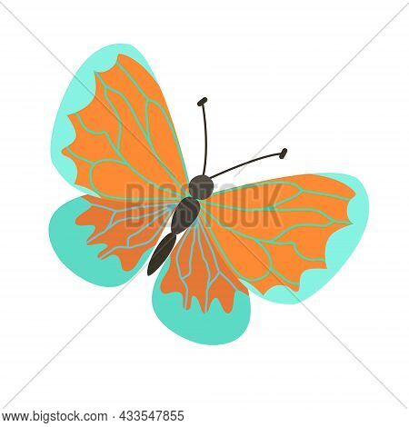 Vector Illustration Of A Cute Butterfly Hand-drawn On A White Background. Cute Tropical Butterfly
