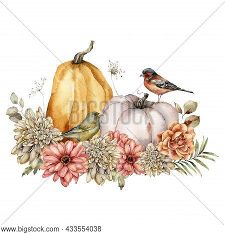 Watercolor Autumn Composition Of Pumpkin, Flowers And Birds. Hand Painted Asters, Dahlias, Chaffinch