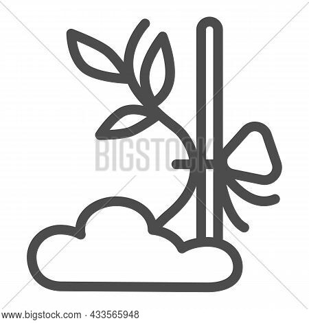 Sapling Sprout Tied To Prop Line Icon, Gardening Concept, Plant Tied To Stick Vector Sign On White B