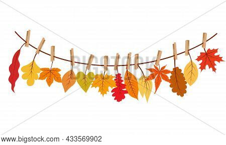 Autumn Leaves Hanging On The Rope Attached With Clothespin. Vector Illustration.