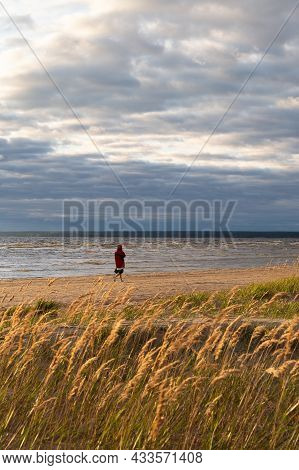 Girl Silhouette Walking On Beach Alone After Sunset Enjoy Fresh Air And Autumn Cloudy Sky View. Woma