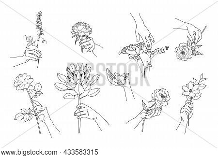 Set Of Outline Female Hands With Tender Flowers Isolated On White. Elegant Floral Compositions With