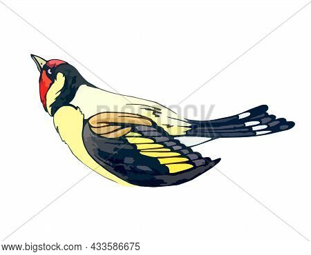 Forest Goldfinch With Bright Yellow And Red Feathers. Little Songbird In A Watercolor Style. Europea