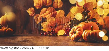 Thanksgiving Pumpkins Still Life On Rustic Wooden Background - Autumn Harvest Festival Concept Table