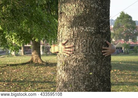 Man Hug Tree Bark. Conservation And Save Planet Concept. Copy Space.