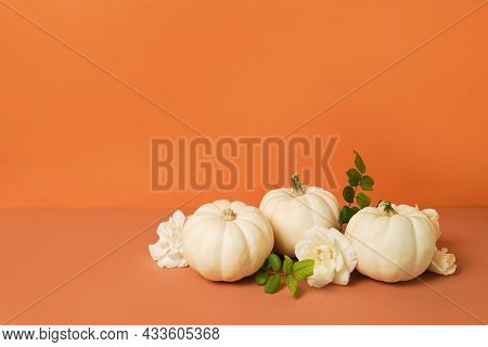Mini White Pumpkins And Flowers Roses On Orange Background. Copy Space. Autumn Thanksgiving Greeting