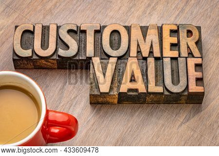customer value word abstract in vintage letterpress wood type, business marketing concept