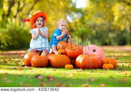 Group Of Little Children Enjoying Harvest Festival Celebration At Pumpkin Patch. Kids Picking And Ca