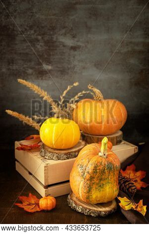 Concept Of Halloween Or Thanksgiving Day, Autumn Harvest. Festive Autumn Seasonal Decorations With P