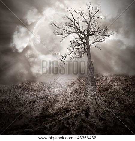 Lonely Tree With Roots Holding The Moon