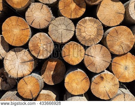 Pile Stacked Natural Sawn Wooden Logs Background