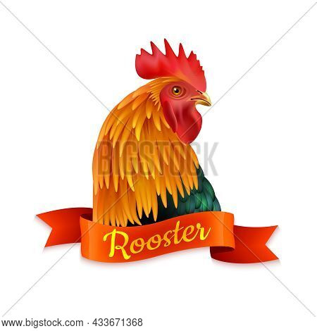 Classic Red Country Rooster Head Turned Aside Closup Image Colorful Picture With Ribbon Text Vector