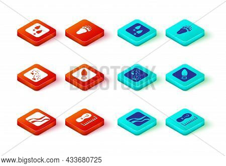 Set Snake Paw Footprint, Square Measure Size, Fox, Human Footprints Shoes, Bear And Icon. Vector