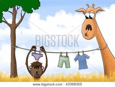 Jungle Laundry