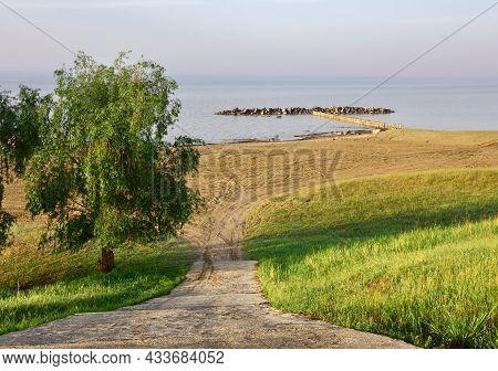 Fresh Grass And Leaves On A Tree On A Green Slope In Spring, Descent Down To A Sandy Beach, Coastal