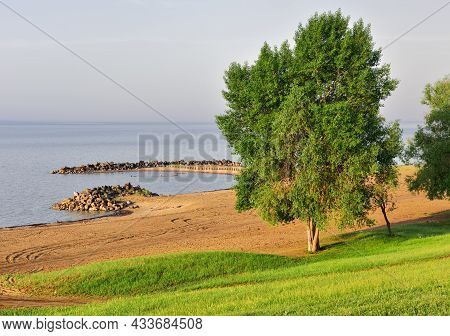 Fresh Grass And Leaves On A Tree On A Green Slope In Spring, A Descent Down To A Sandy Beach, Shore